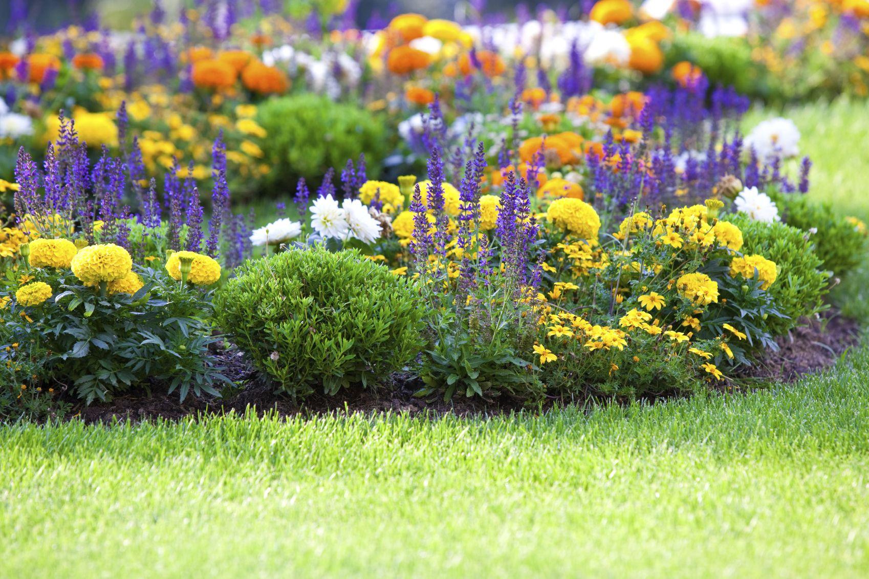 flower gardening how to start a flower garden gardens garden