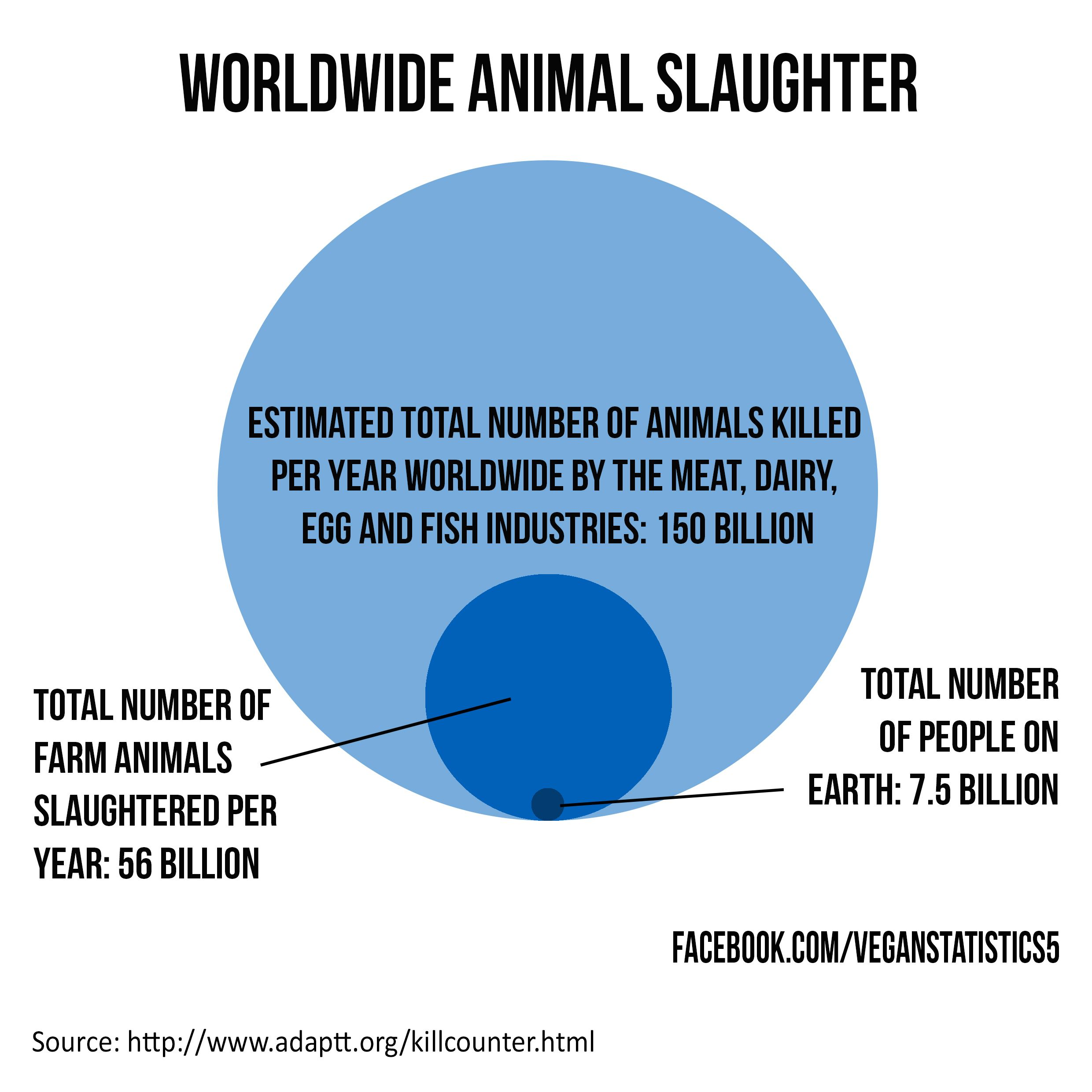 vegan, vegetarian, slaughter, animal rights, farming, animal agriculture,  environment, meat, dairy, eggs, fishing