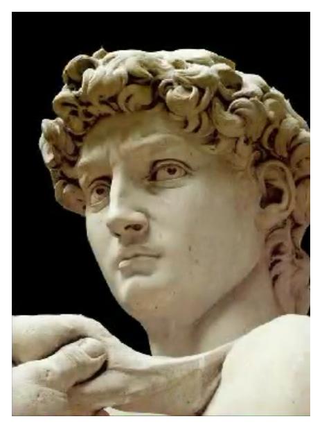 Michelangelo`s David head Michelangelo, Sculpture