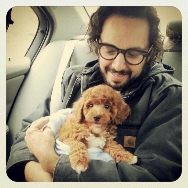 Introducing LEO. He's a show worthy miniature poodle. Leo ♥s Brooklyn.