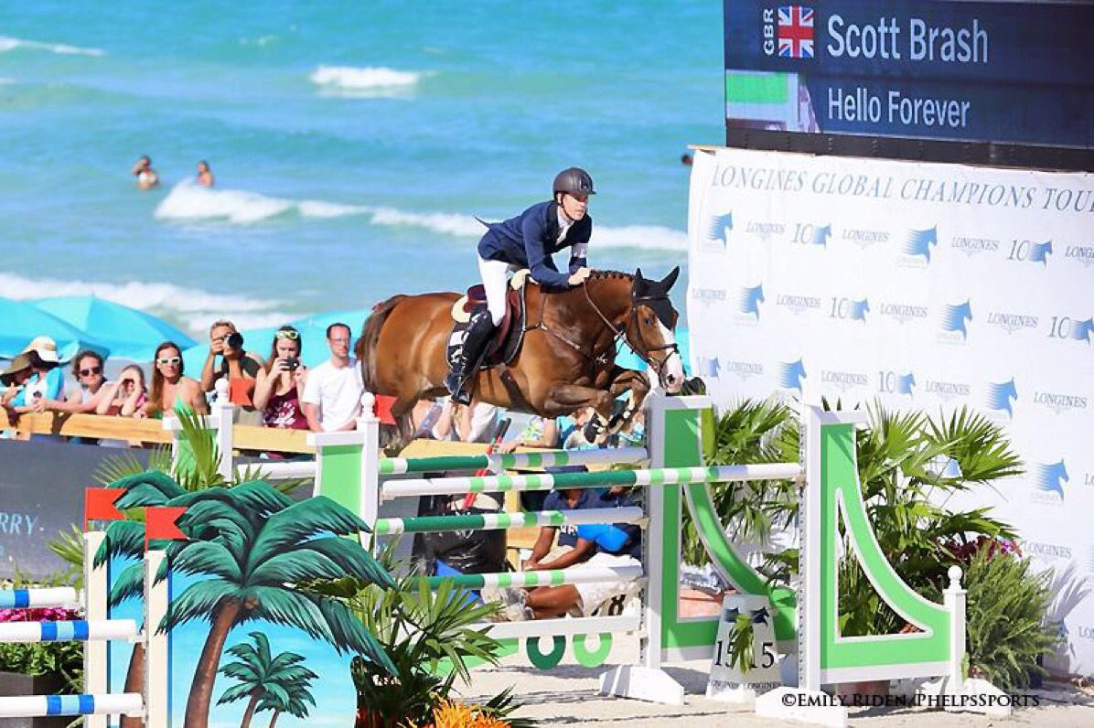Horseback Riding Longines Global Champions Tour Miami Beach Scott Brash Hunter Jumper Show Jumping