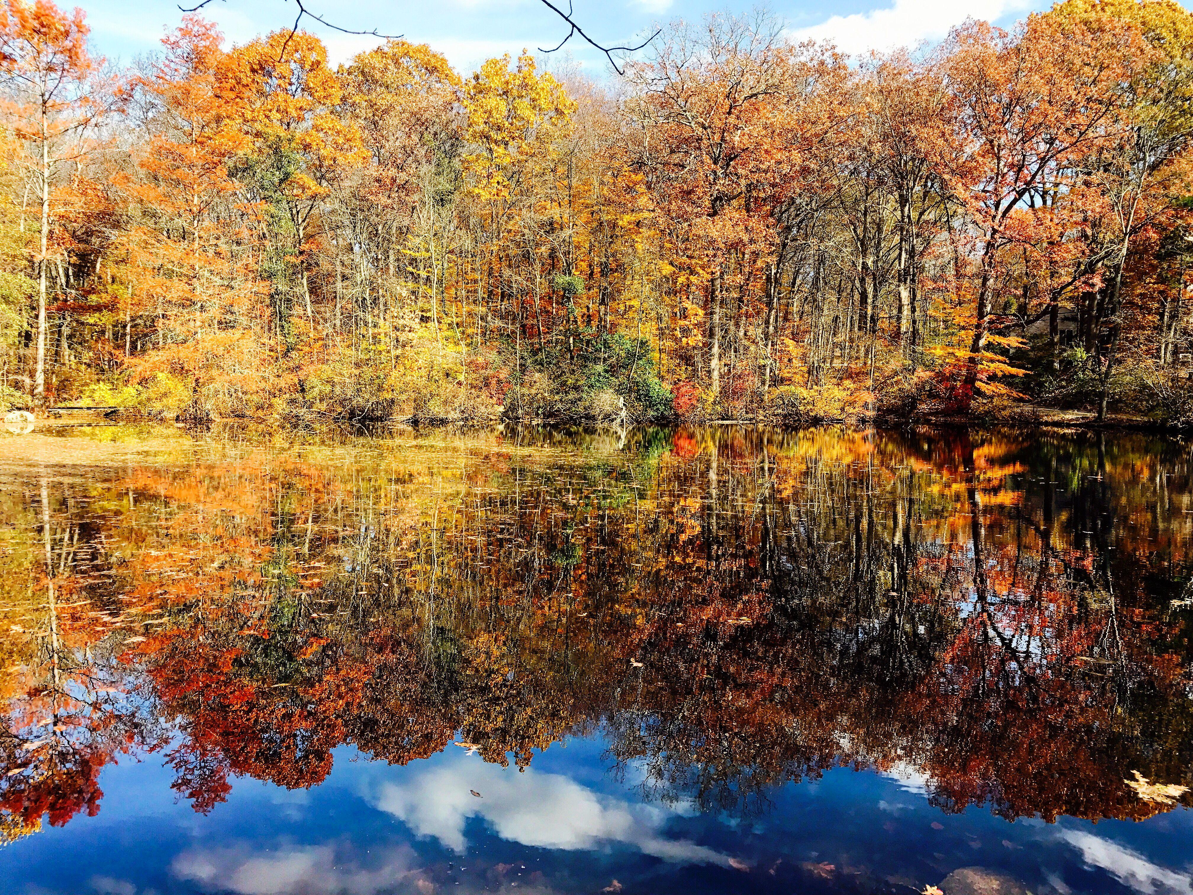 Bartlett Arboretum Stamford CT | Home (for now) | Pinterest | More ...
