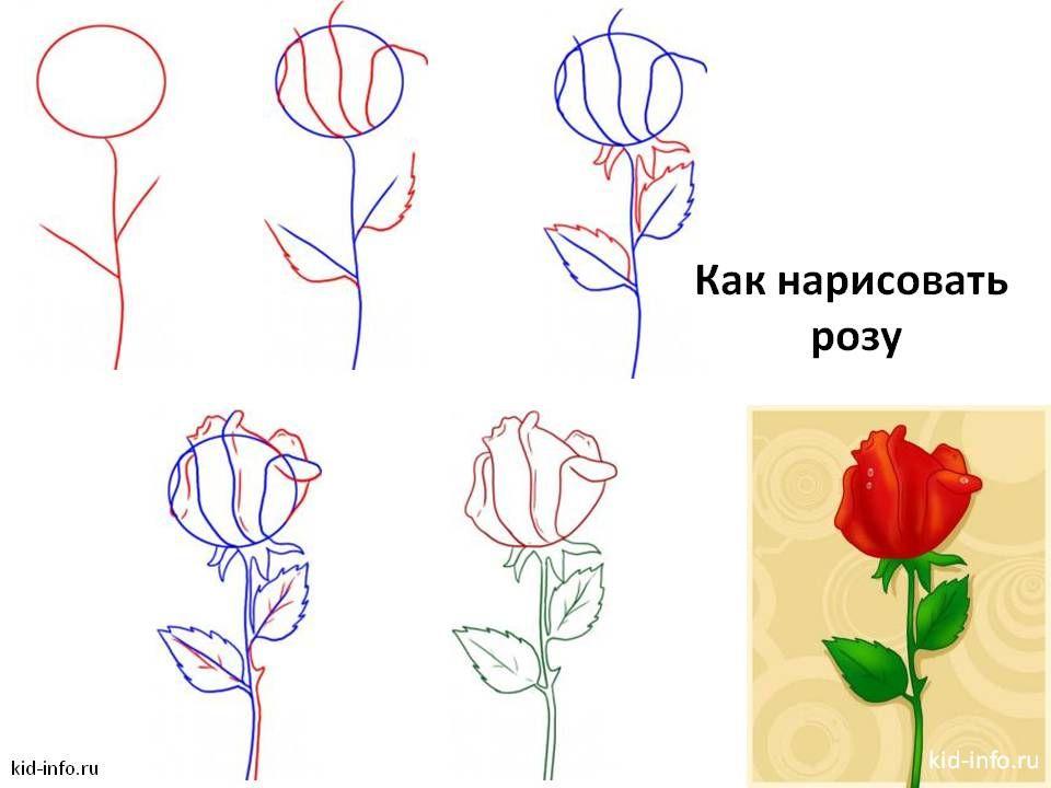 Как пошагово нарисовать открытку