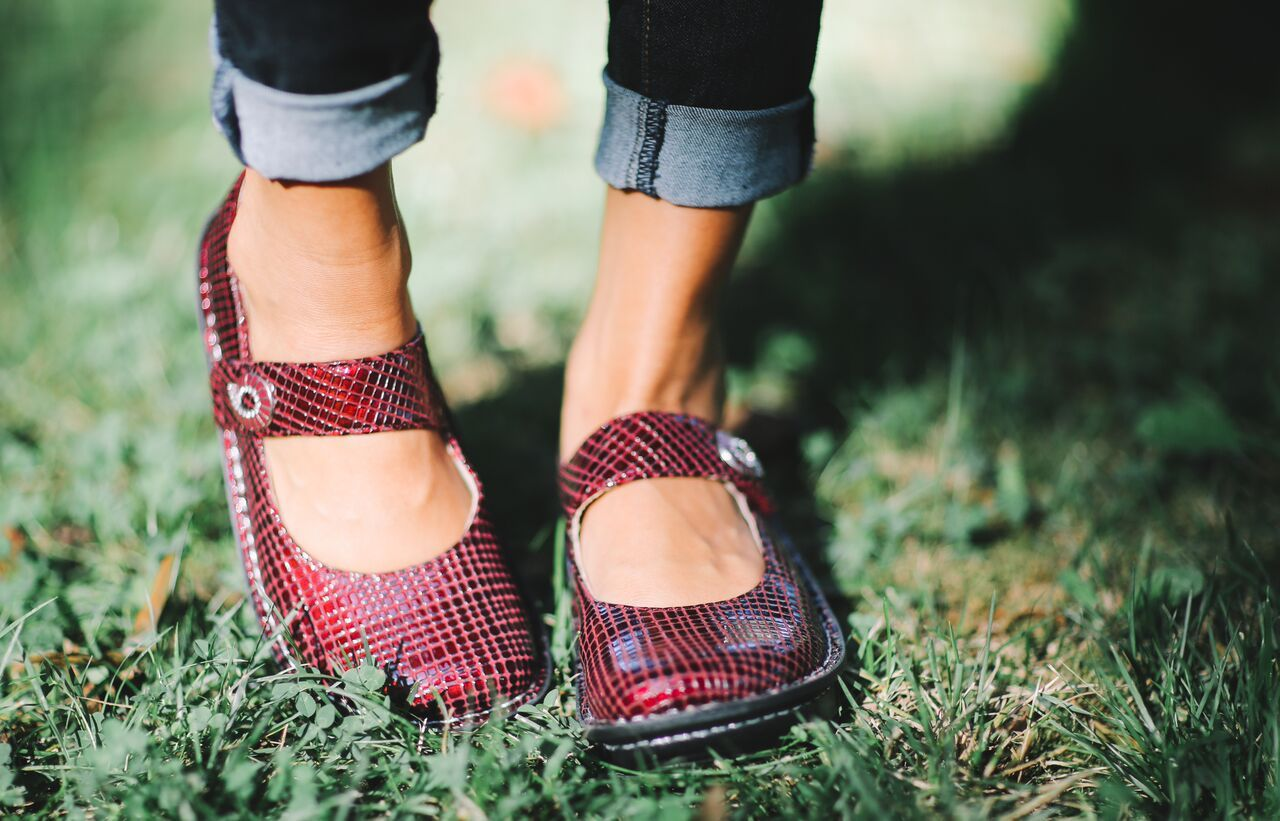 Alegria Paloma in 'Jazzy Wine' from Alegria Shoe Shop