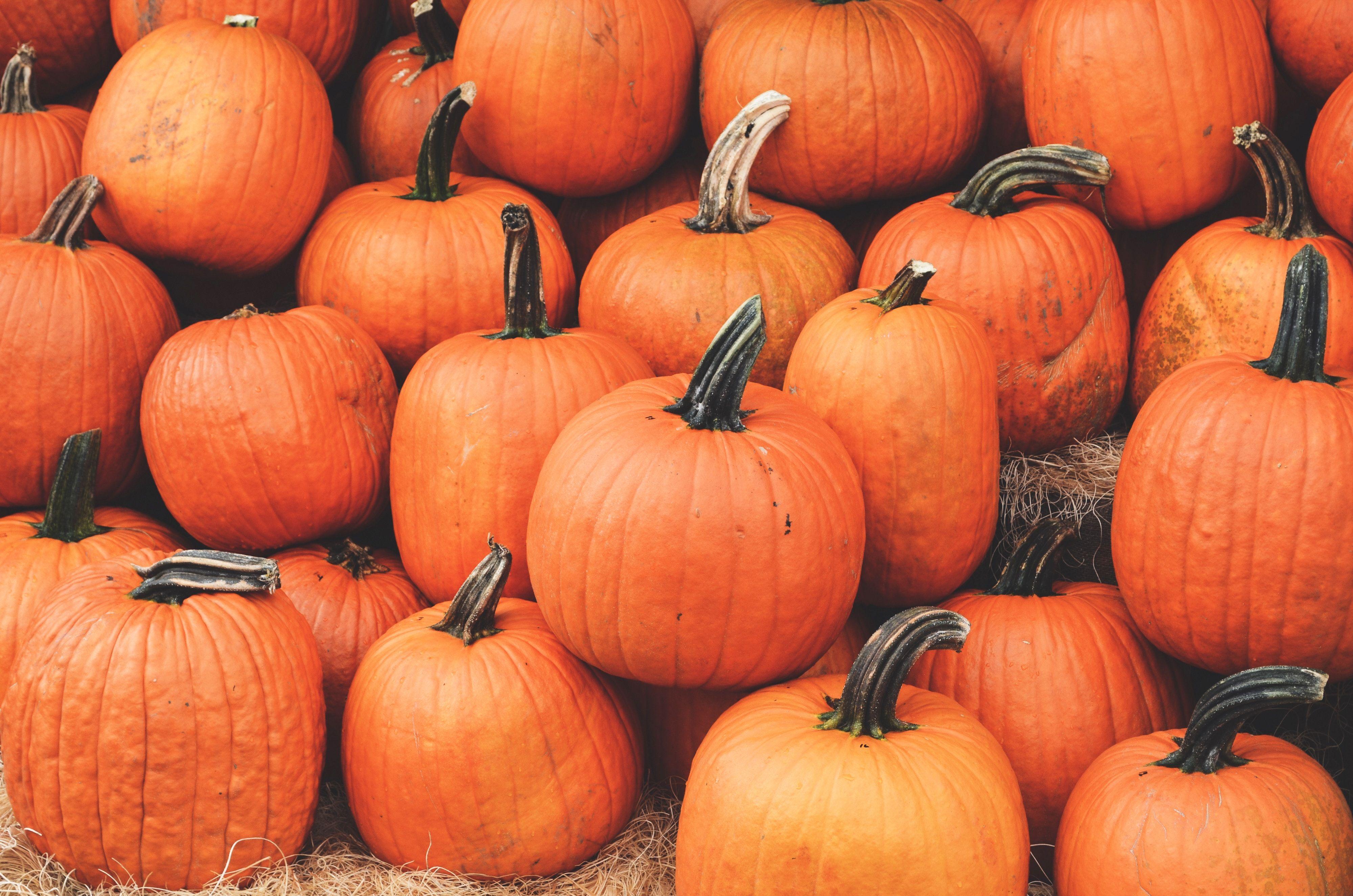 Wallpapers Vegetable Autumn Squash Superfood Pumpkin Desktop Wallpaper Fall Halloween Desktop Wallpaper Cute Desktop Wallpaper