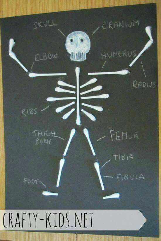 Skeleton Crafts For Kids Part - 50: Crafty Kids: FOR KIDS - Silly Skeleton (suitable For All Ages)