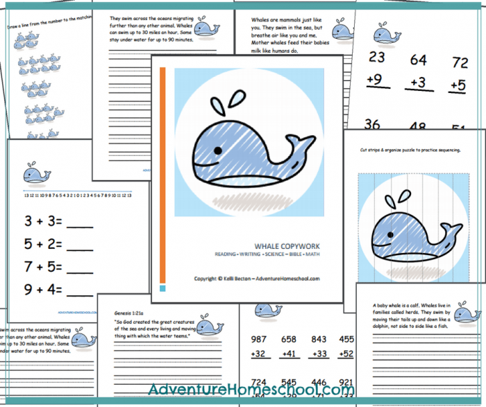 whales-math-copy-pic | My Blue Boat School Theme | Pinterest | Math ...