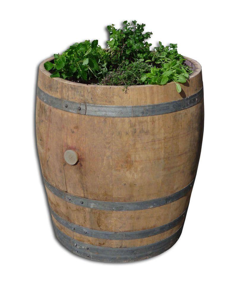 Krauterbeet Hochbeet Aus Einem Echten Weinfass Hochbeet Weinfass Hochbeet Holz