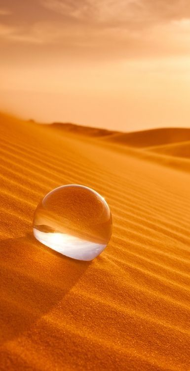 Image result for water droplet in a desert
