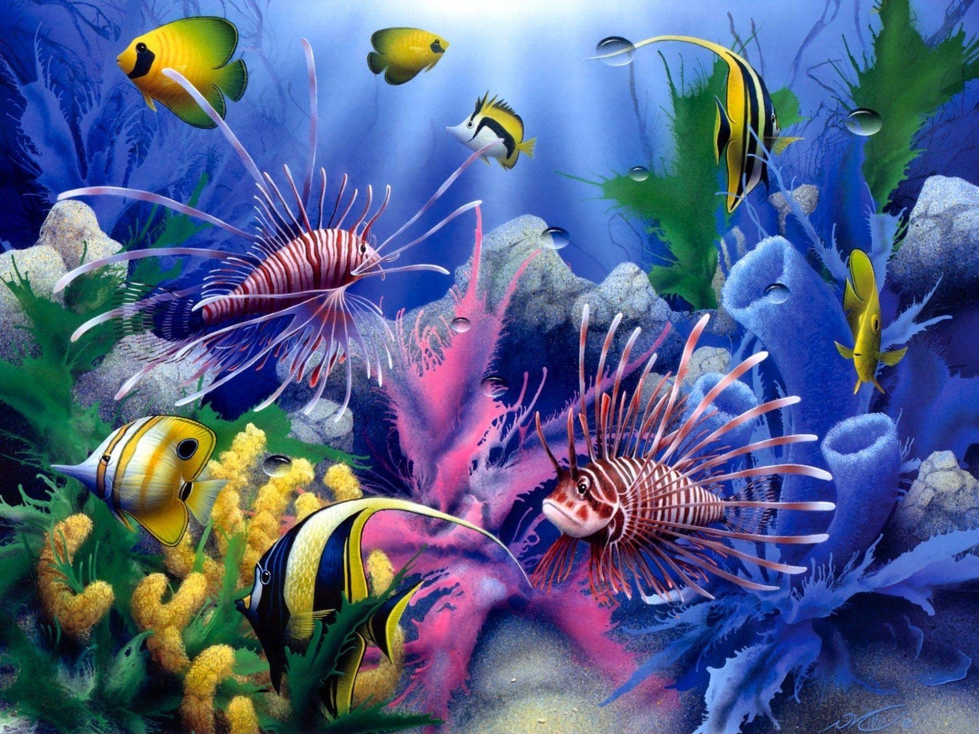 Coral Reef Paint Color What Color Is Coral Reef Color Underwater Coral Reef Ocean
