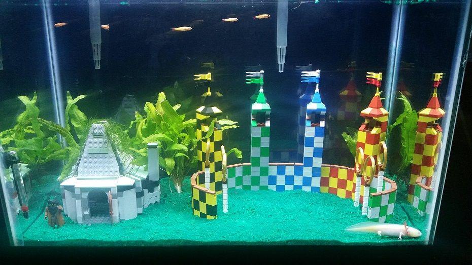 Unique Aquarium Decorations Fish Tank Themes Aquarium Decorations Fish Tank