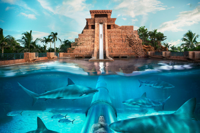 Aquaventure At Atlantis Island Water Park Paradise Island Bahamas Water Park