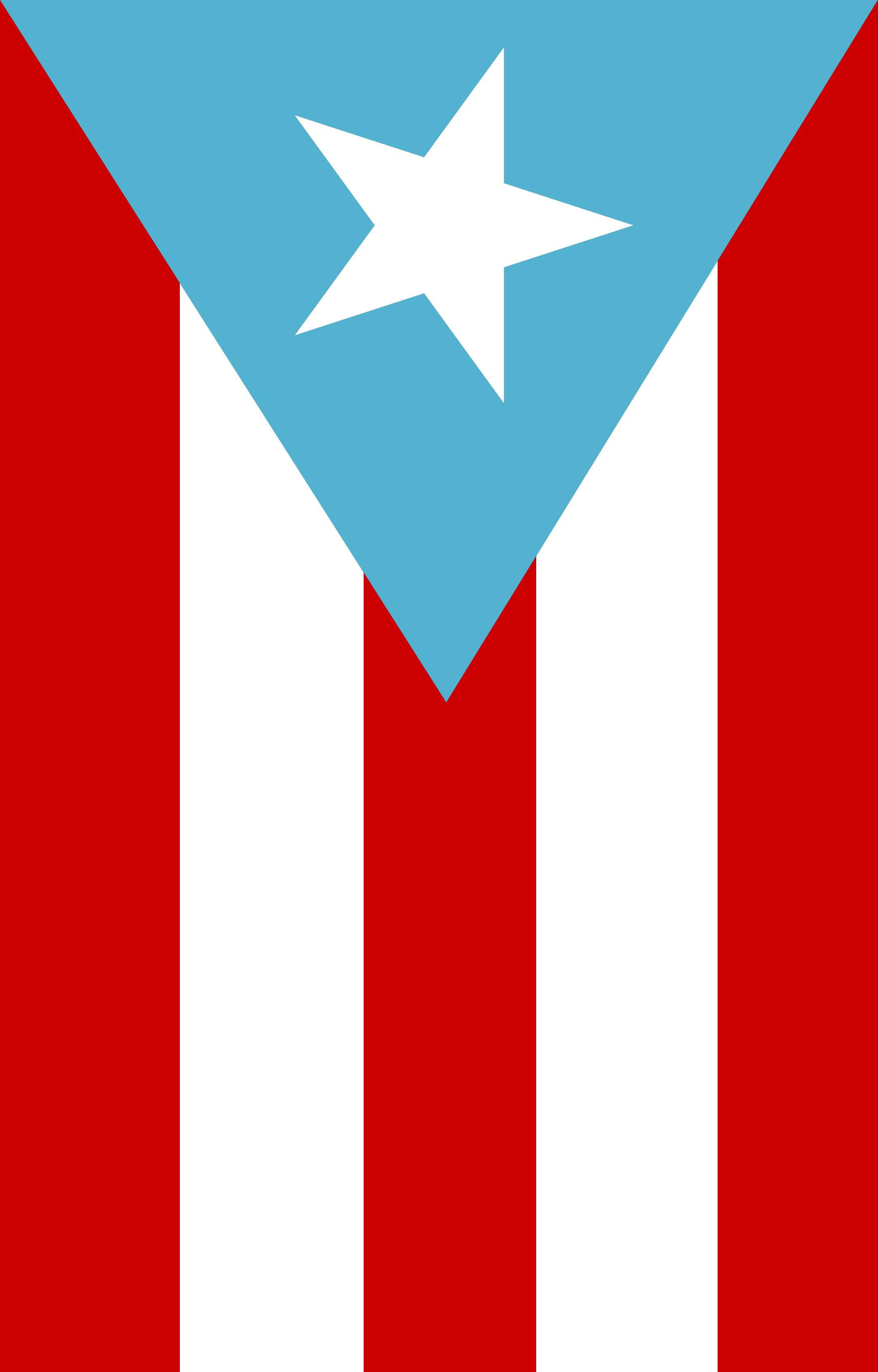 Puerto Rican Flag Hanging With Images Puerto Rican Flag