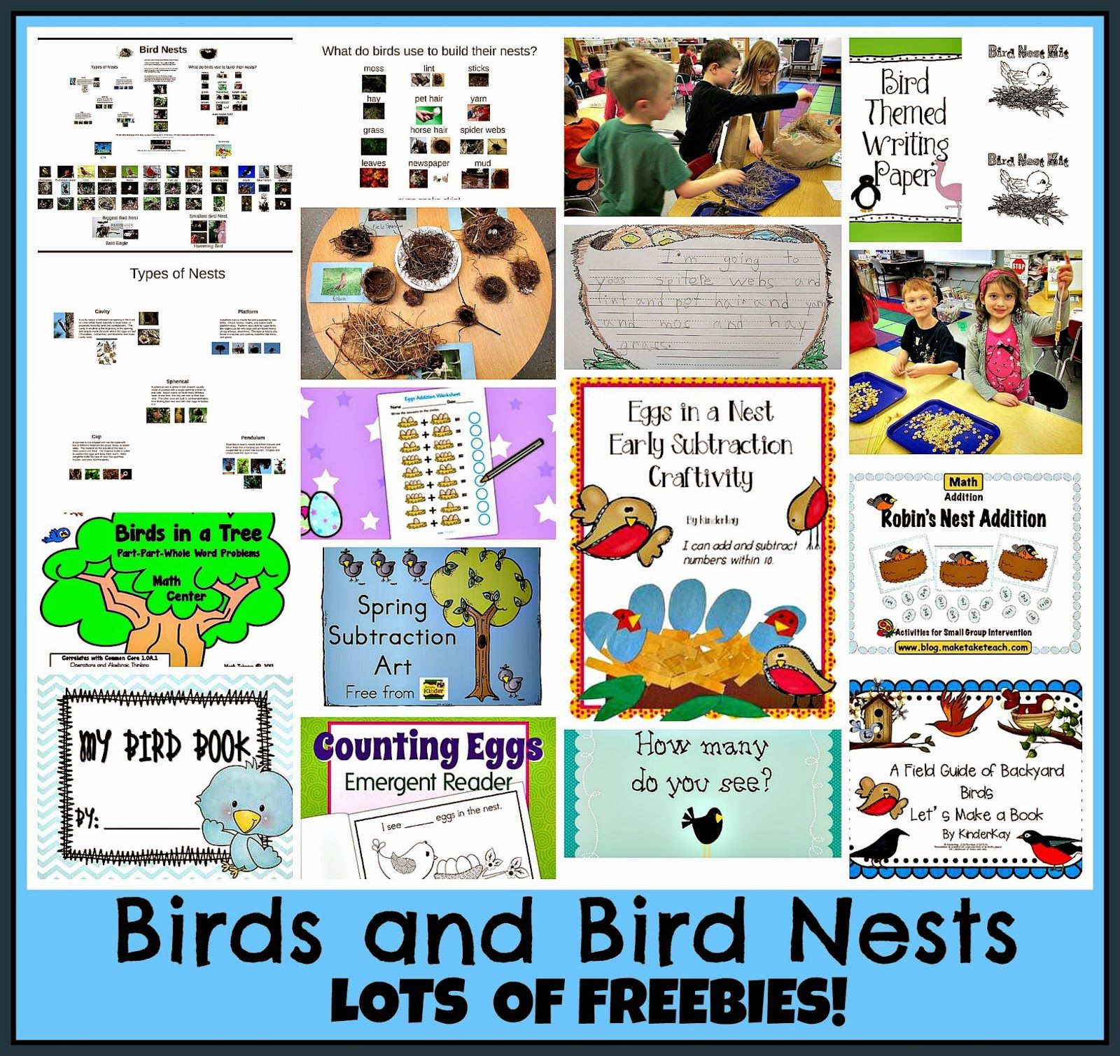 bird nests and birds free prezi and post all about teaching