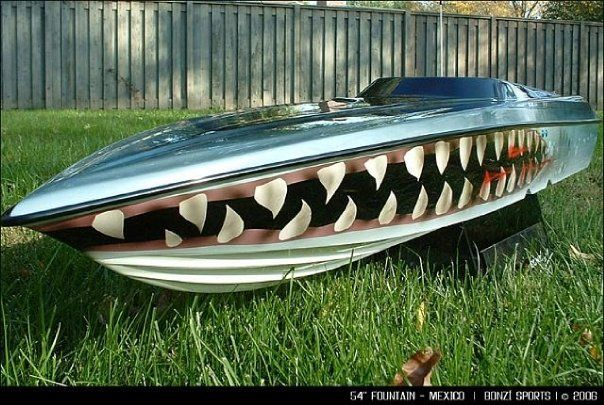 Check out this cool Shark's Mouth 54