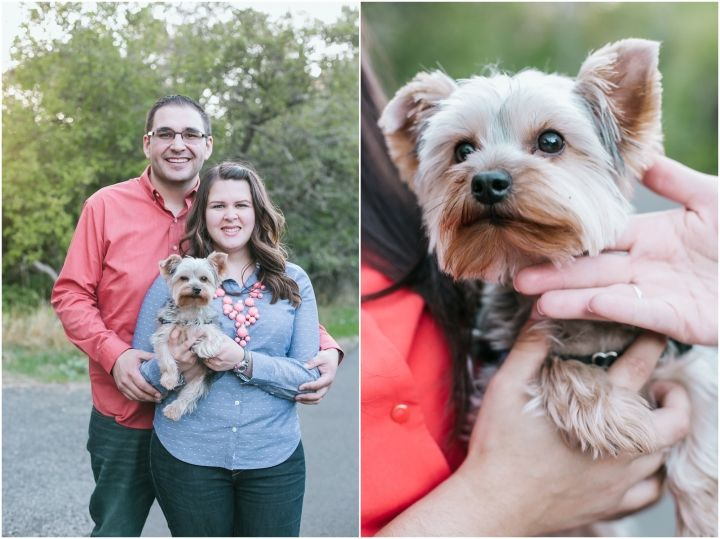 Castro - family session in the fields | Beka Price Photography - puppy love, dog session