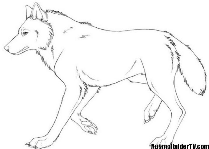 wolf ausmalbild   Malvorlagen   Pinterest   Ausmalbilder, Wolf und ...
