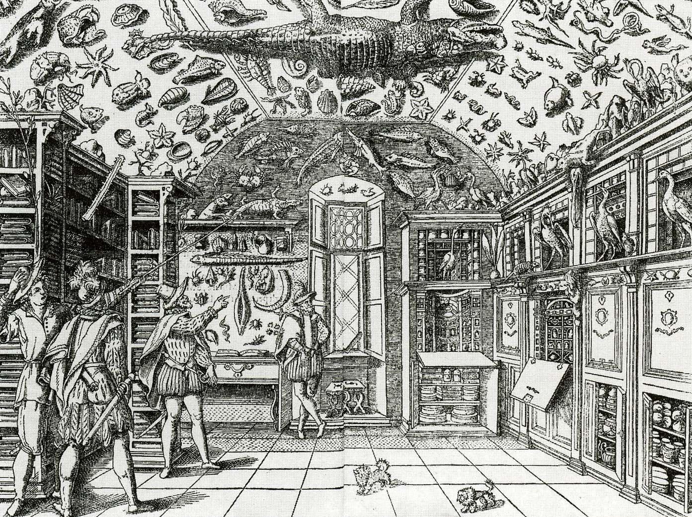 Wunderkammer di Ferrante Imperato - Napoli 1599