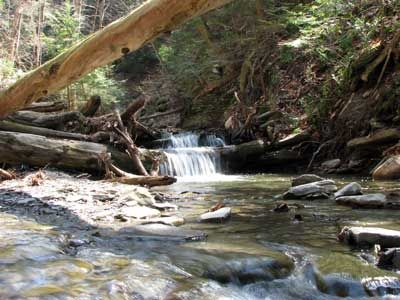 conklin gully high tor falls waterfall gorge in naples ny