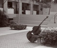 Double Bass by EigoK8