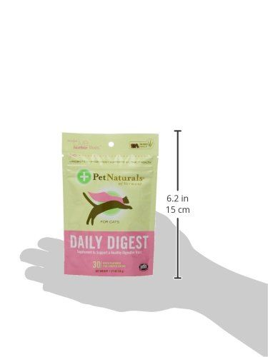 Pet Naturals of Vermont Daily Probiotic for Cats Digestive