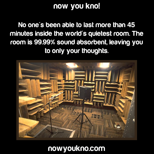 Room So Quiet You Can Hear Your Heart Beat