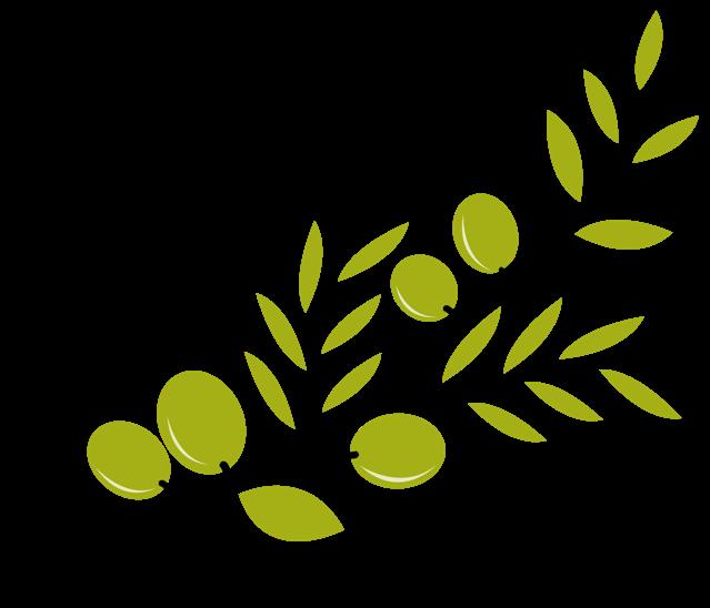 b u003eolive u003c b u003e u003cb u003ebranch u003c b u003e clip u003cb u003eart u003c b u003e graphic design rh pinterest com olive branch clip art images olive branch border clip art