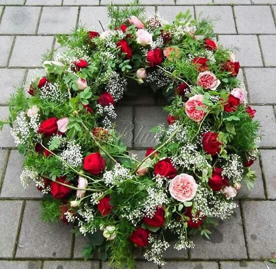 Rosa - Rot Rosen