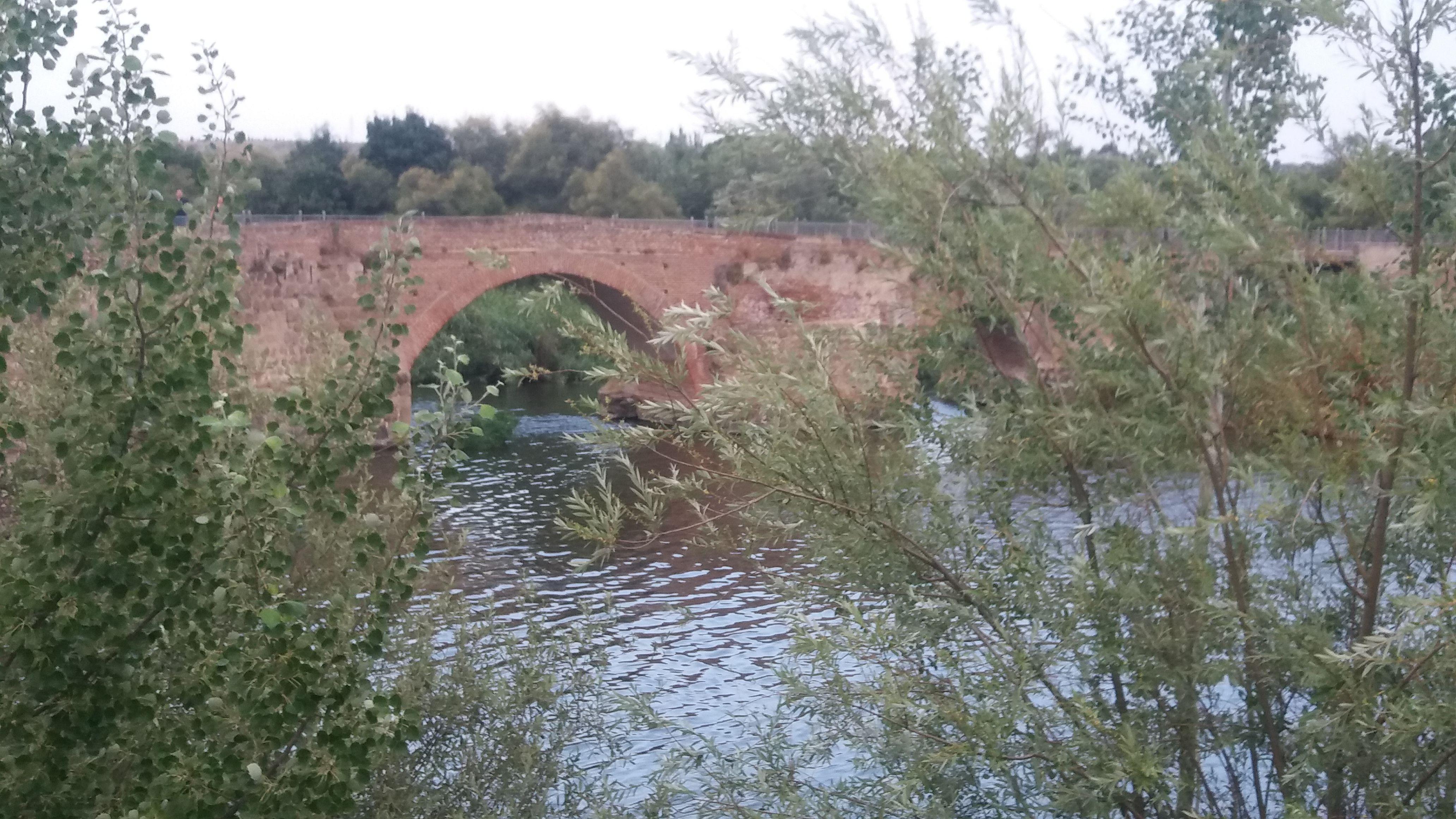 TALAVERA DE LA REINA (Toledo) - Junto al río Tajo (3)