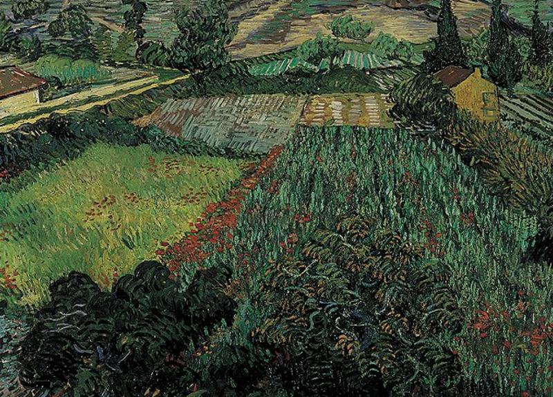 Vincent Van Gogh Field With Poppies 1889 Mohnfelder Van Gogh Gemalde Van Gogh