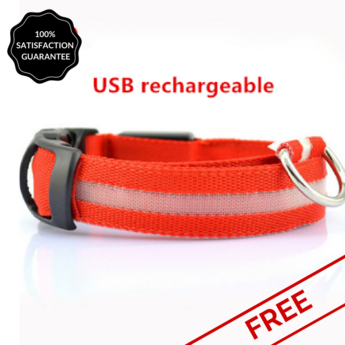 FREE RED Nightime LED Dog Collar With USB Re-Chargeable Batteries