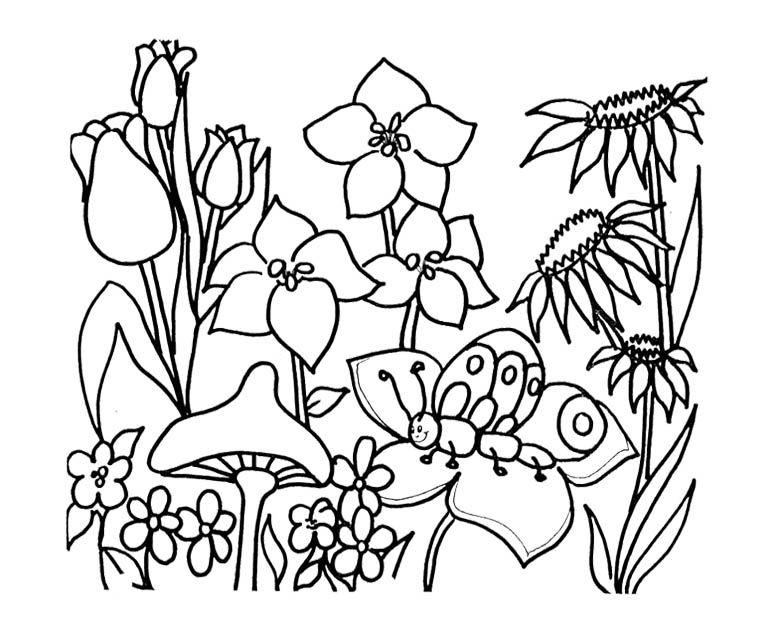 garden coloring pages for kids - Google Search Coloring Pages - copy free coloring pages of hibiscus flowers