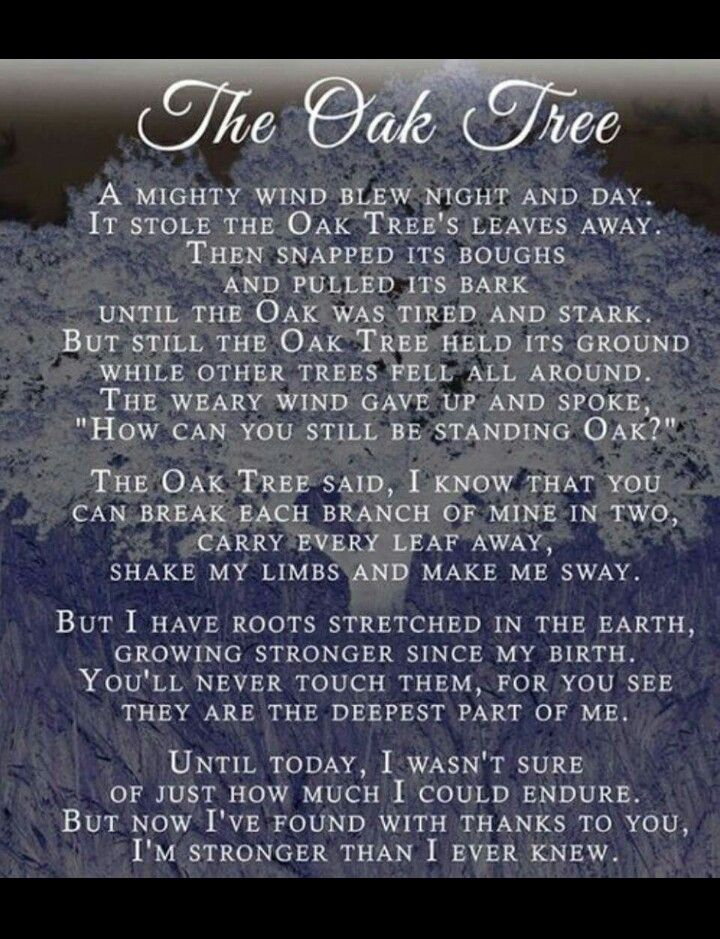 This Poem Helped Me Get Through The Toughest Chapter In My Life