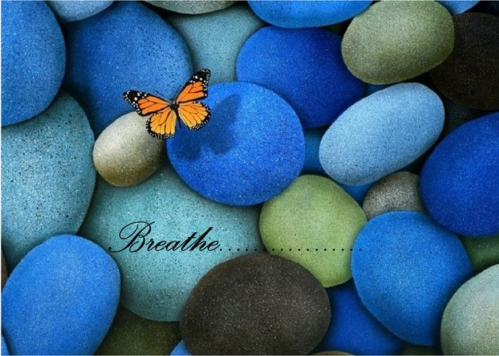 This Is A Real Card Not An E Card Shared From Sendcere Butterfly Wallpaper Blue Butterfly Wallpaper Stone Wallpaper Full hd butterfly stone wallpaper