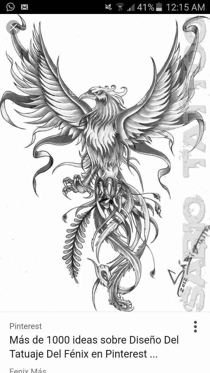Pin By Iordan Liviu On Tattoo Phoenix Bird Tattoos Phoenix