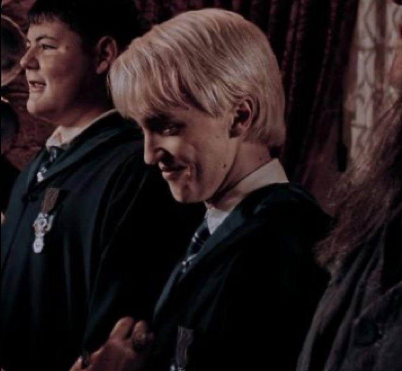 Pin By 𝑫𝒖𝒅𝒂 On D R A C O Draco Malfoy Malfoy Family Draco Malfoy Aesthetic