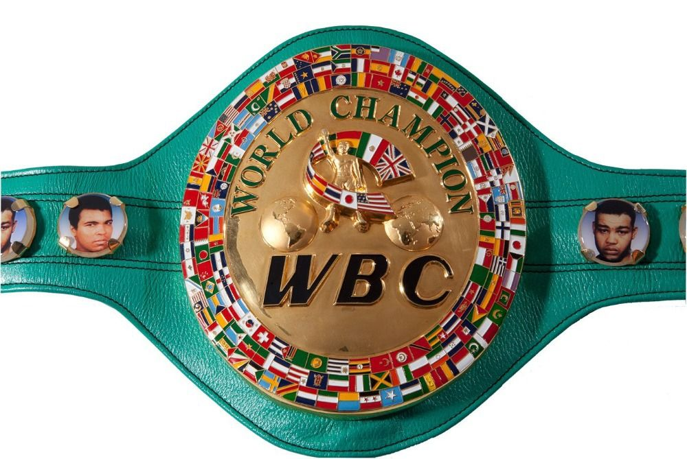 $329.00 (Buy here: http://appdeal.ru/d66h ) WBC Championship Belt Boxing Legends Gold plated Replica Belt 1:1 Size Free Shipping for just $329.00