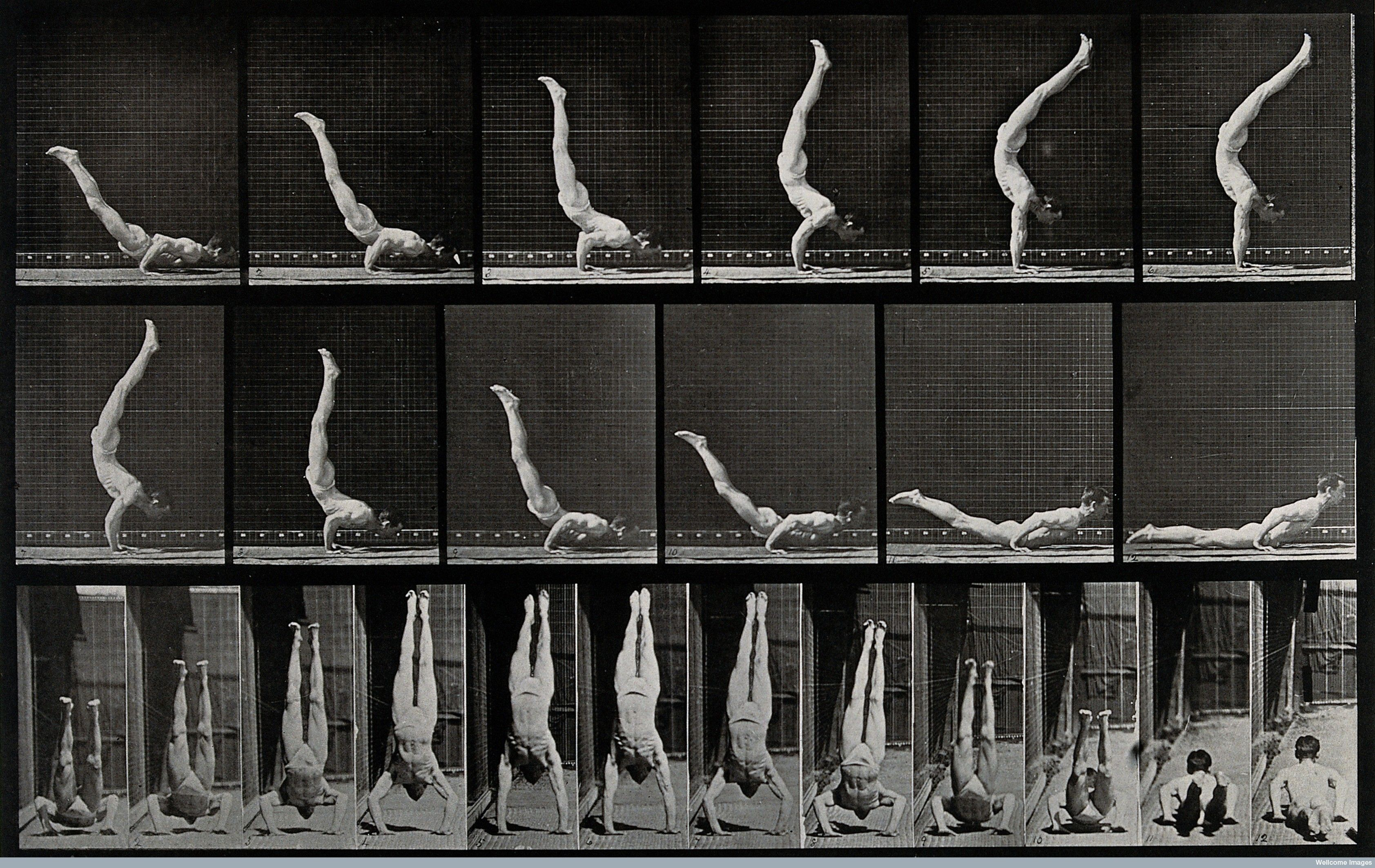 Eadweard Muybridge: Hand stand from a laying position Fotos em ...