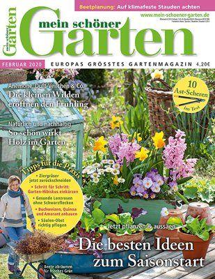 10 Bäume und Sträucher, die Sie im Spätwinter schneiden sollten - Mein schöner Garten #vorgartenanlegen