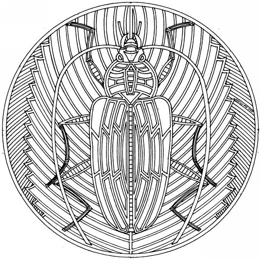 Mandala insecte mandala mandalas coloriage diy - Coloriage insecte ...