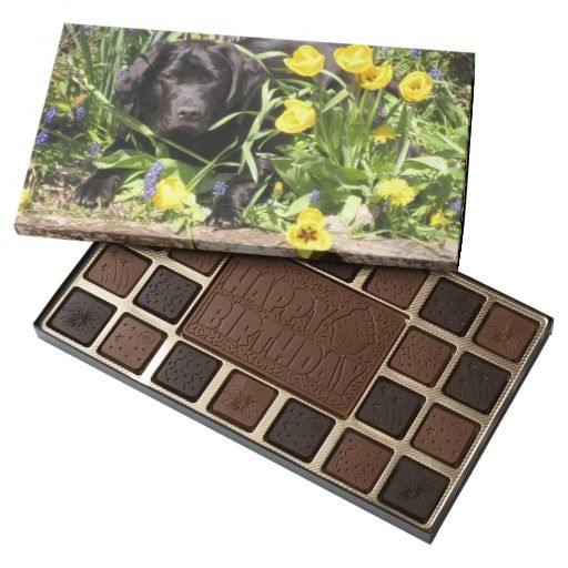 Black Labrador in the Flowers Chocolate Box by www.piscesmoon.co.uk #zazzle #chocolate #gifts #labrador #blackdog