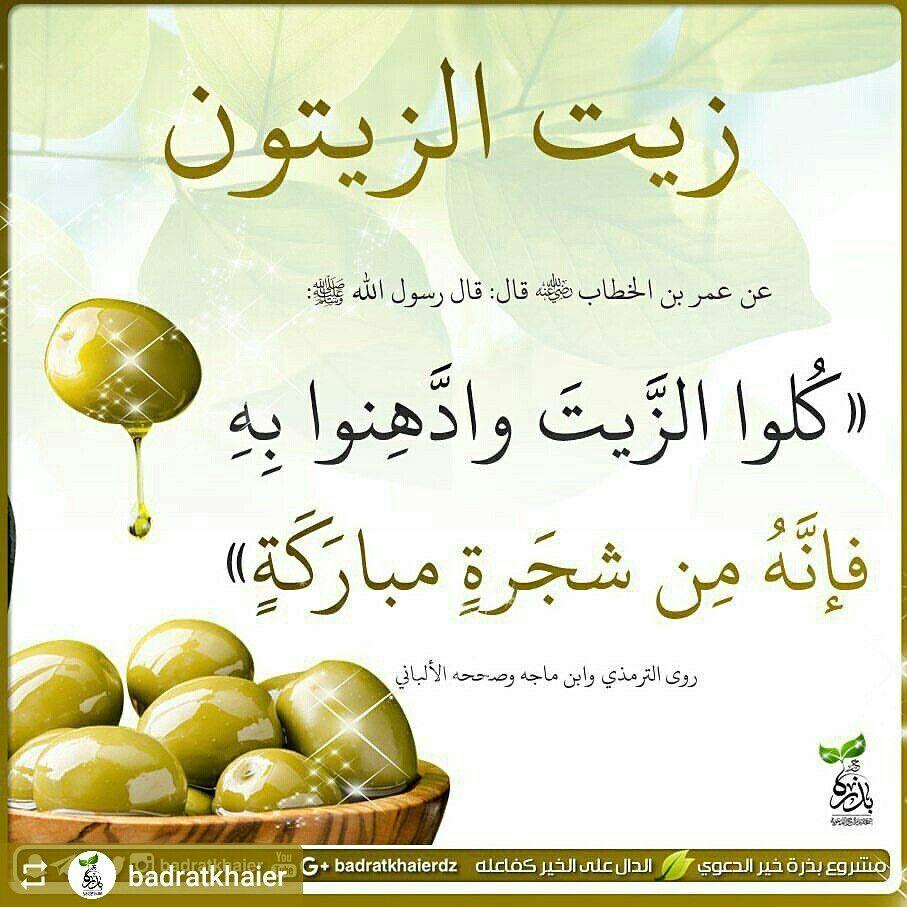 Pin By براسي On النصيحة السلفية Islam Facts Islam Hadith Ahadith