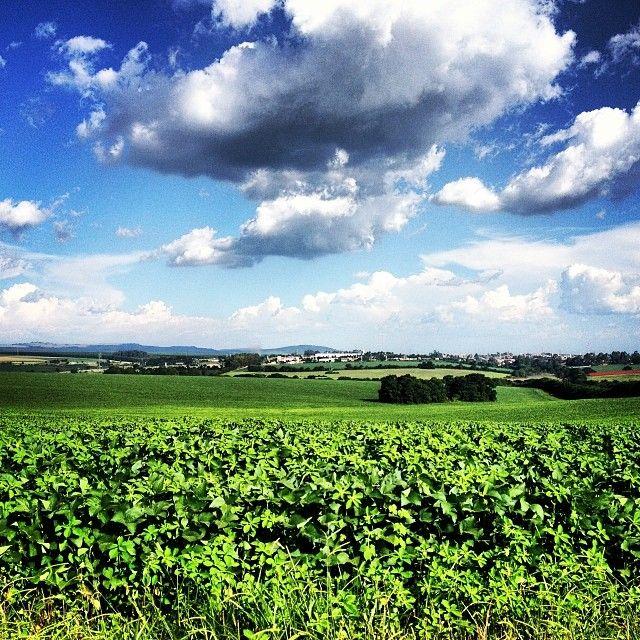 .@amor_tece_dores | #amor_tece_dores #farm #sky | Webstagram