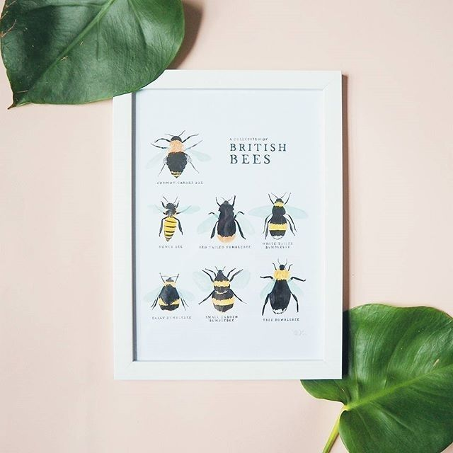 Available in store! regram @anniedornansmith Looks like lots of bee-lovers are getting something fab this Valentines! Grab one for 10 or 15 framed! | anniedornansmith.co.uk
