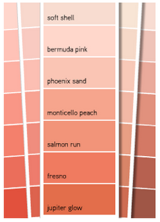 Phoenix Sand As A Possible Paint Color For The Bedroom