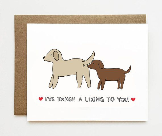 I Like You Card Funny Anniversary Card Cute Relationship Card