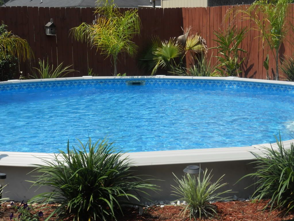 Above ground pool landscaping landscaping around base of for Above ground pool border ideas