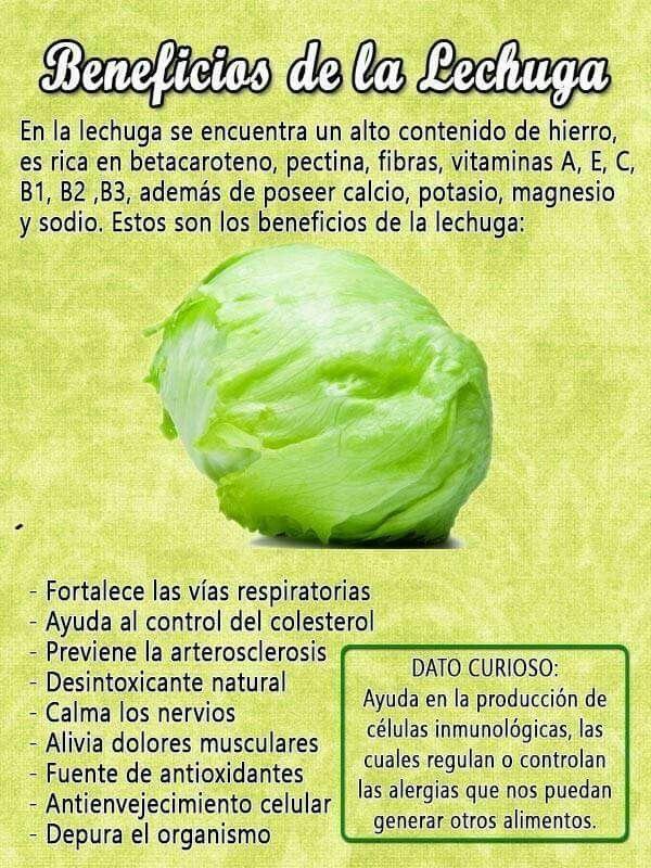 Pin De Adriana Perez En Vegetales Beneficios De La Lechuga Recetas Para La Salud Frutas Y Verduras Beneficios