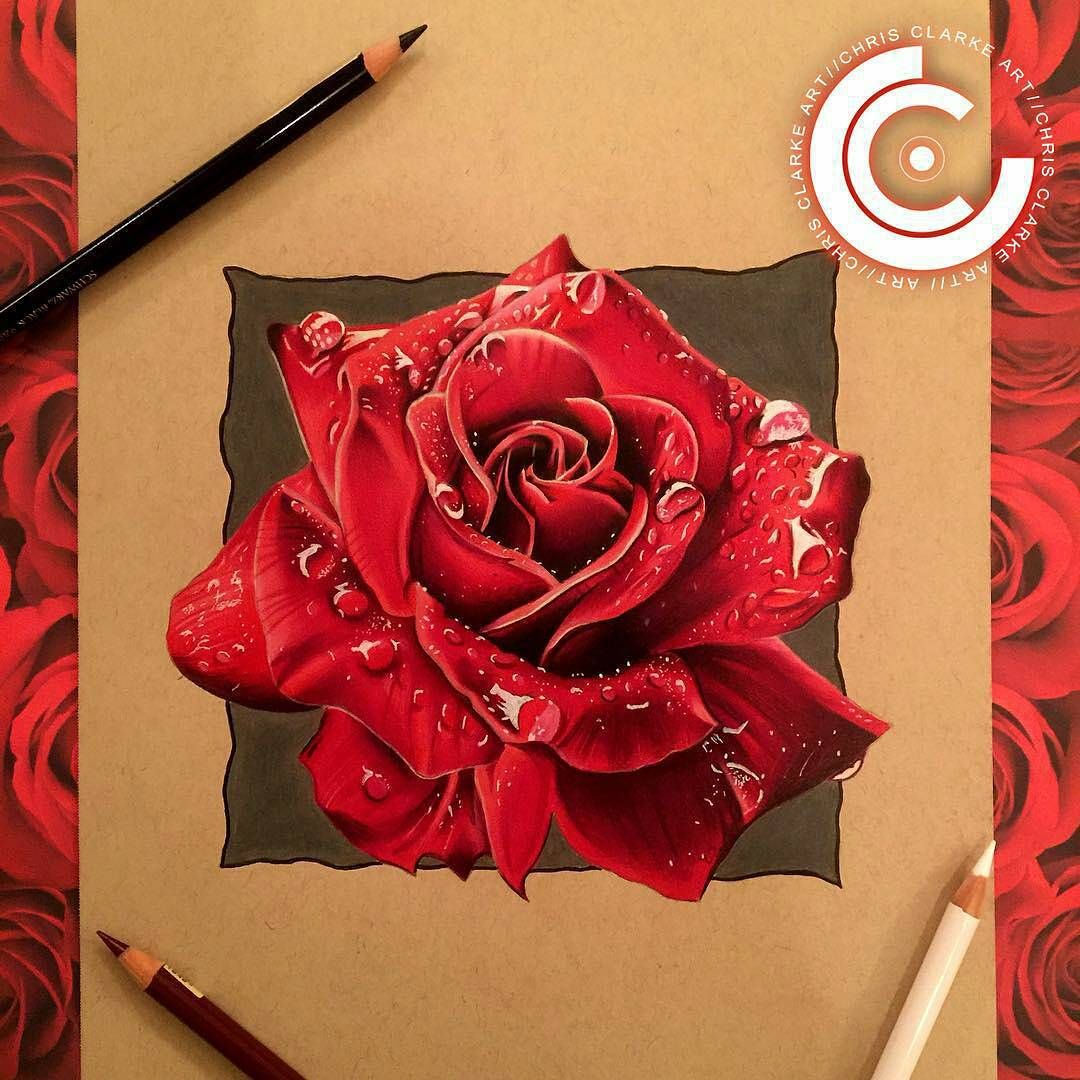 Join Us At The City Of Trees Art Ink Expo Oct 14 16 In Sacramento Ca Don T Miss The Lettering Seminar W Bo Realistic Rose Drawing Roses Drawing Rose Drawing