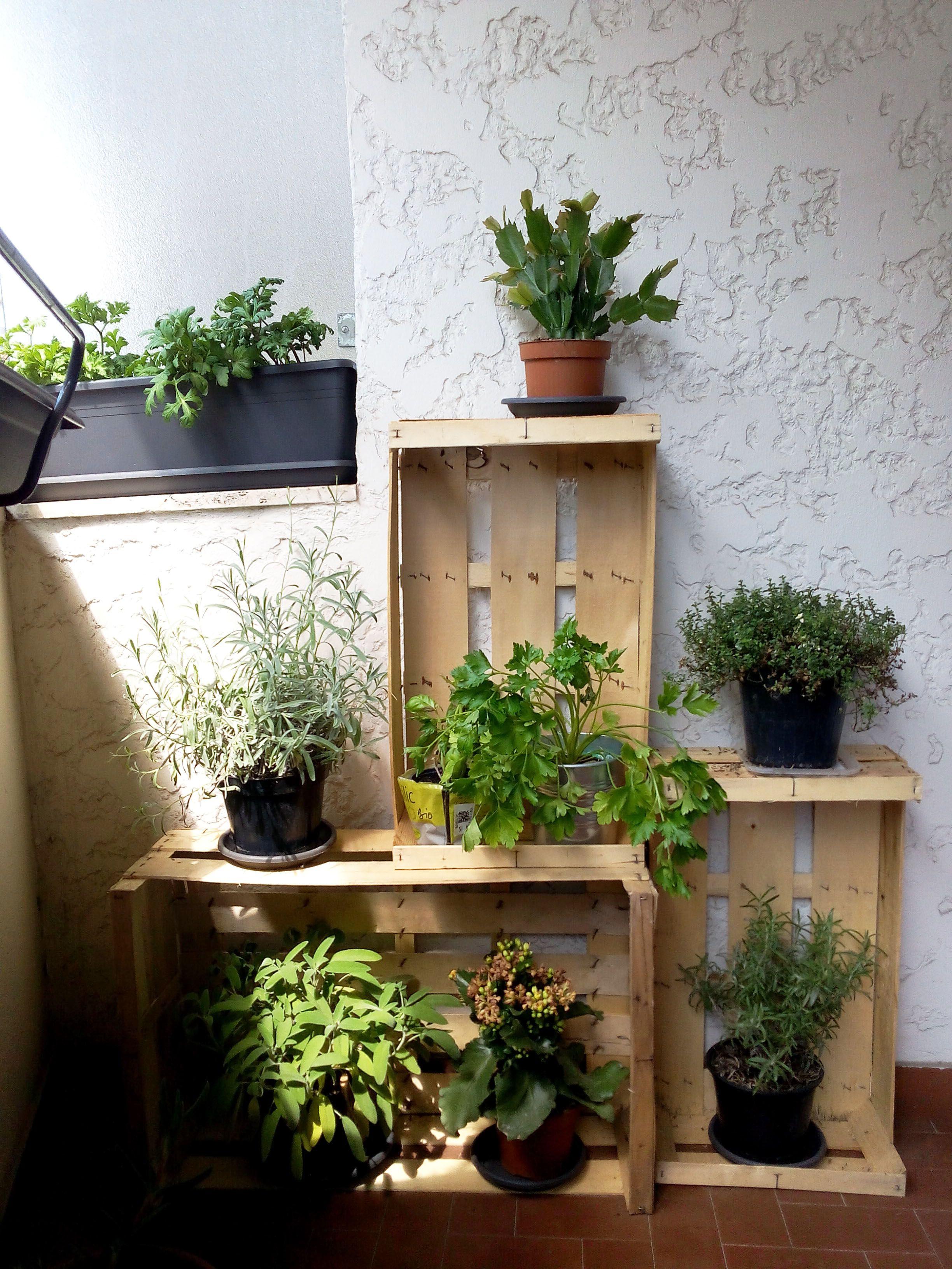 Orto sul balcone aromi piante aromatiche cassette della frutta rustico coltivare - Creare un giardino sul balcone ...